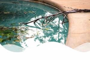 waves-dirty-pool-e1555103194178