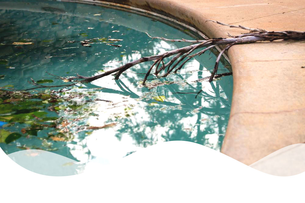 Is This the Year for Pool Renovation?